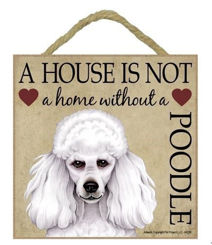 """House is Not Home Poodle White  Sign Plaque 5/""""x5/"""" dog"""