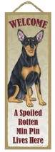 "Spoiled Rotten Miniature Pinscher Lives Here Sign 5"" x 15"" Plaque Gift p... - $13.98"