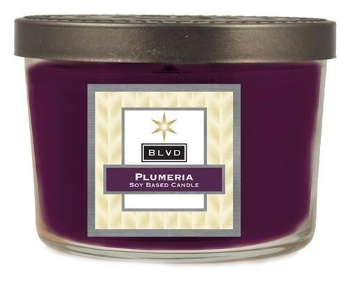 5 Ounce Plumeria Candle [Kitchen]