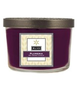 5 Ounce Plumeria Candle [Kitchen] - $14.84