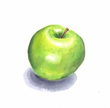 "Akimova: GREEN APPLE,food, watercolor and pencils,garden, 5.75""x6"" - $13.00"