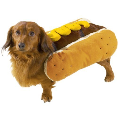 "Casual Canine Hot Diggity Dog with Mustard Costume for Dogs, 12"" Small"