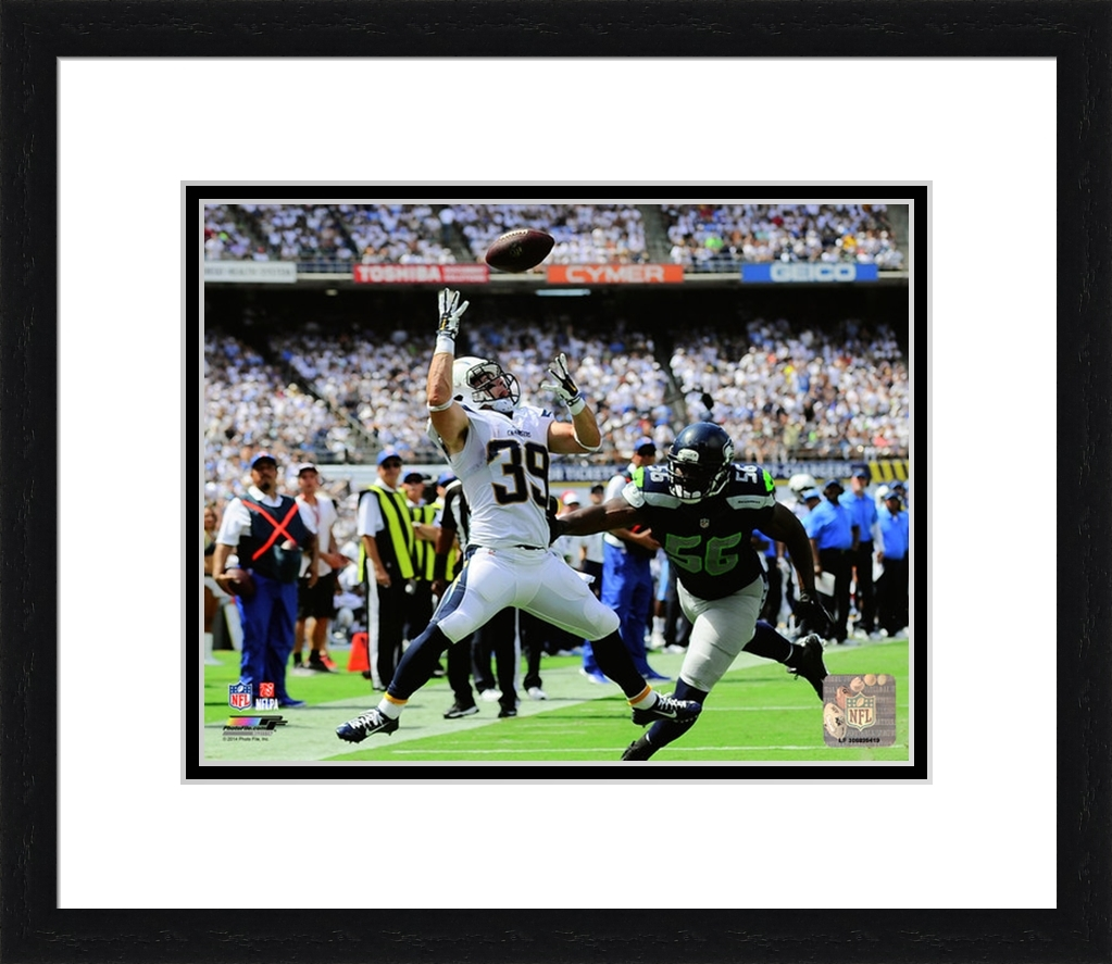 Framed Danny Woodhead 2014 Action San Diego Chargers Photo
