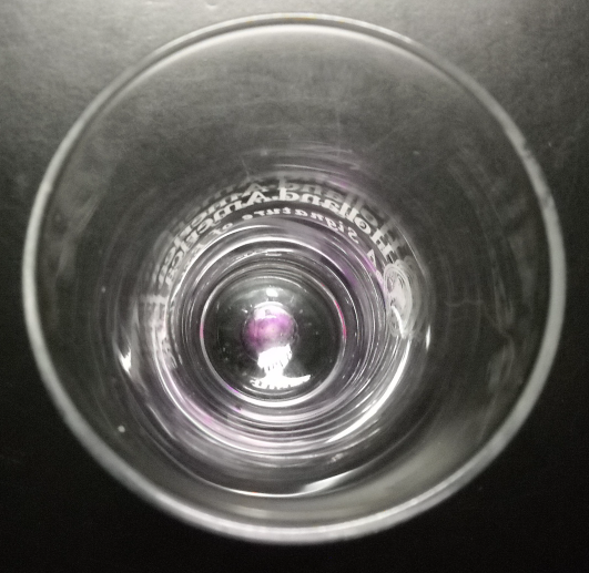 Holland America Line Shot Glass Flared Style Clear Glass Lavender Bubble in Base