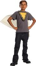 Shazam Cape And Chest Emblem Kids - $29.17