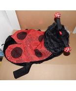 """Halloween Pet Costume Ladybug Light Up Eyes Lg Fits 18"""" To 21"""" Dog Belly... - $9.86"""