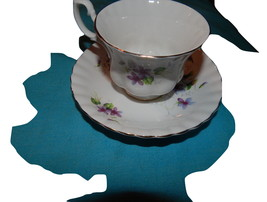 Royal Albert cup and saucer bone china England Violets Free shipping  - $37.99