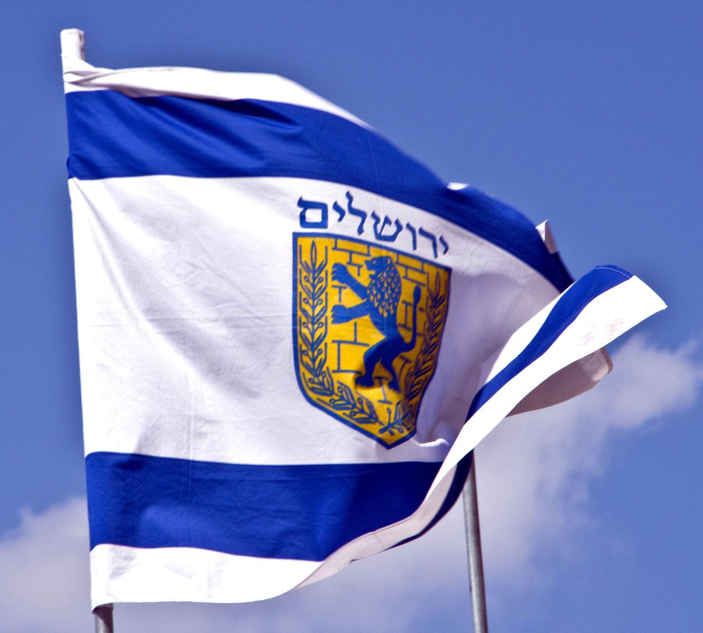 "Jerusalem Coat Of Arms Flag Large Israel Print Lion City Symbol 39X59"" 1X1.5m"