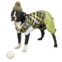 Casual Canine Putter Pup Costume, Small - €38,22 EUR