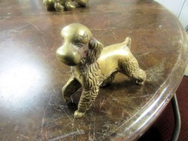 "LARGE SOLID BRASS DOG   4"" HIGH  5"" LONG    - $22.50"