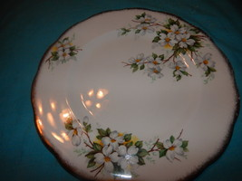 Royal Albert Dogwood Tabbed & Dinner Plate Free Shipping bone china Engl... - $52.99