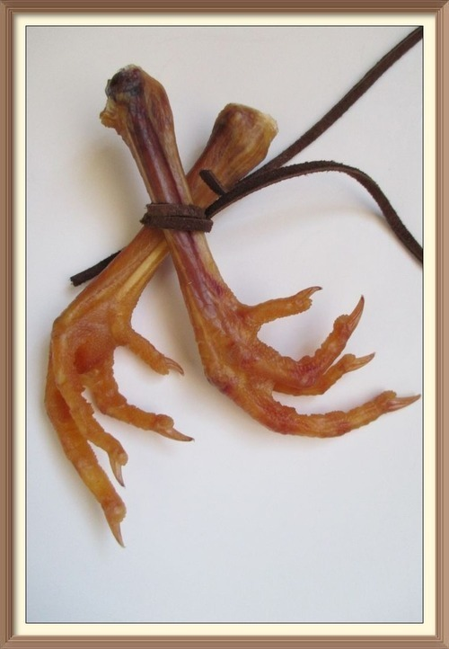 Primary image for Chicken Foot Magick ASK 4ANY BLESSING 2COME 2u SHAMAN PRIESTESS RITUAL