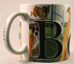 Boxer mug 1 thumb200