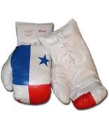 Panama - 16 oz. Boxing Gloves - $16.74