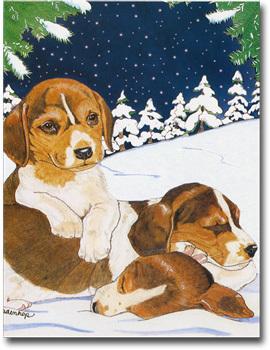 Beagle snow f