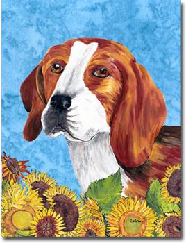Beagle summerdays f