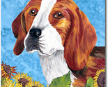 Beagle summerdays f thumb155 crop