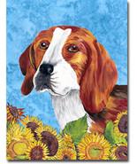 Beagle summerdays f thumbtall