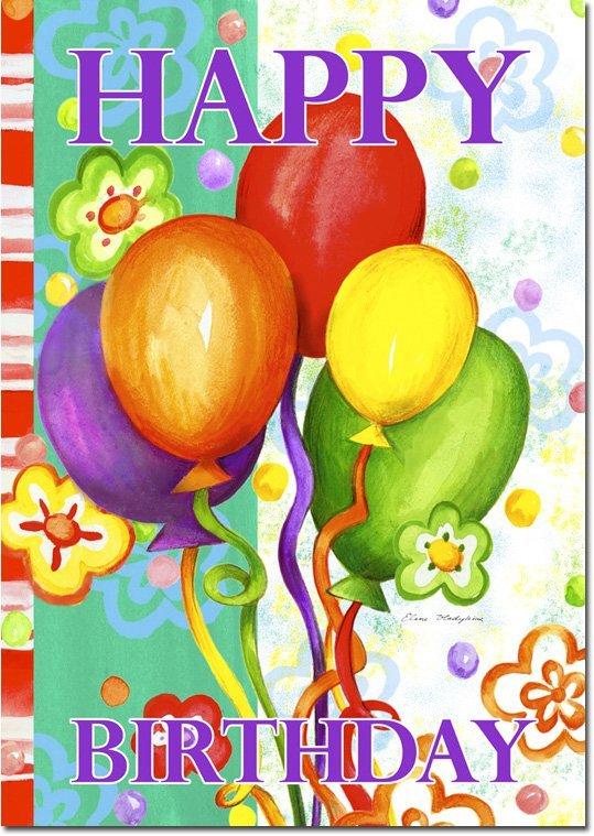Birthday bash 9590 toland