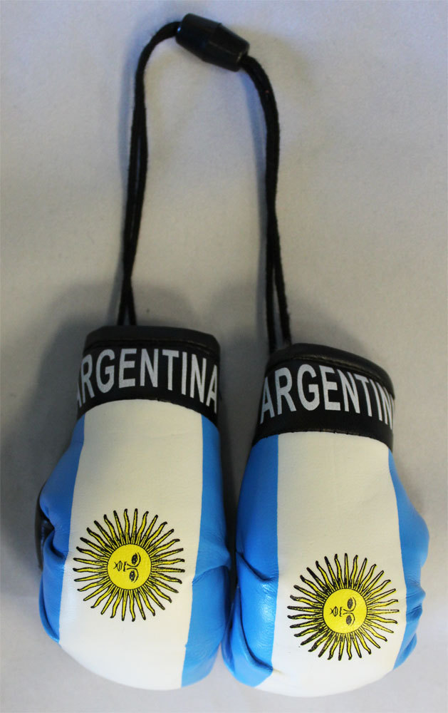 Argentina boxing gloves 1