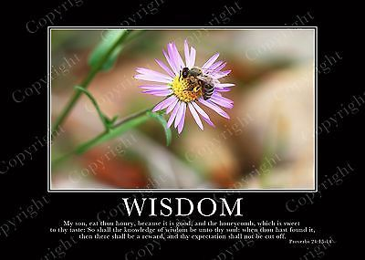 Bible Scripture Picture Print In Frame & Glass-Wisdom-Faith-Spirituality