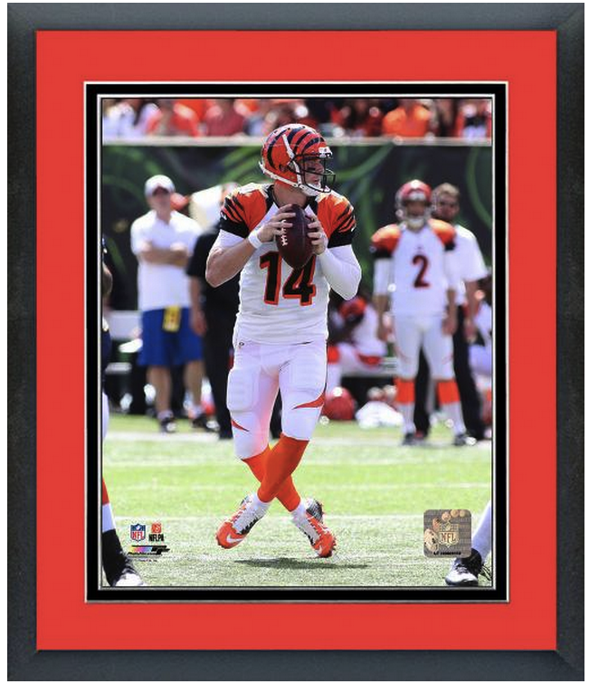 Andy Dalton Cincinnati Bengals All Pro - 11 x 14 Matted/Framed Photo