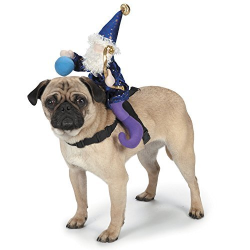 Zack & Zoey Wizard Saddle Dog Costume, Small