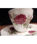 Royal Albert Royal Canadian Rose cup & saucer china England Free Ship # 17 +11 - $48.99