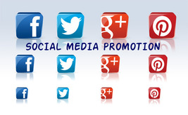 Social Media Promotion: 5 items 14 Days, Twitter, Facebook, Pinterest, G... - $9.99
