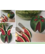 Hostess Watermelon Knife Set & Holder Stainless Steel NIB  - $8.99