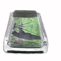 """Black Bear Glass Ashtray D1 4""""x3"""" Nature, wild, forest, grizzly - $9.85"""