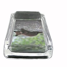 """Black Bear Glass Ashtray D7 4""""x3"""" Nature, wild, forest, grizzly - $9.85"""