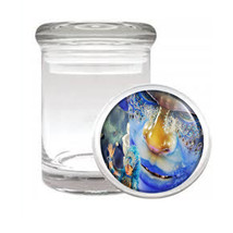 Carnival D8 Odorless Air Tight Medical Glass Jar Container Brazil Sexy Fun - $7.88
