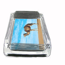 "Camel D1 Glass Ashtray 4""x3"" Desert Animal Hump Back - $9.85"