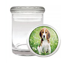 Dog Beagle 4 Odorless Air Tight Medical Glass Jar - $12.95