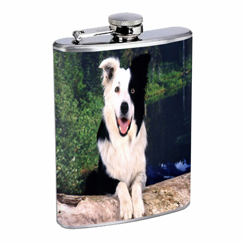 Dog Border Collie 03 Stainless Steel Flask 8oz