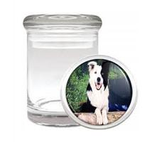 Dog Border Collie 03 Odorless Air Tight Medical Glass Jar - $11.41