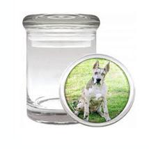 Dog Great Dane 05 Odorless Air Tight Medical Glass Jar - $12.95