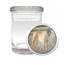 Dog Mastiff English Odorless Air Tight Medical Glass Jar - $12.95