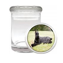 Dog Resting Giant Schnauzer Odorless Air Tight Medical Glass Jar - $12.95