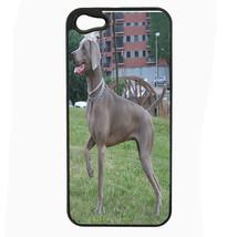 Dog Weimaraner 01 iPhone 5 5S Hard Case Back Cover - $10.42