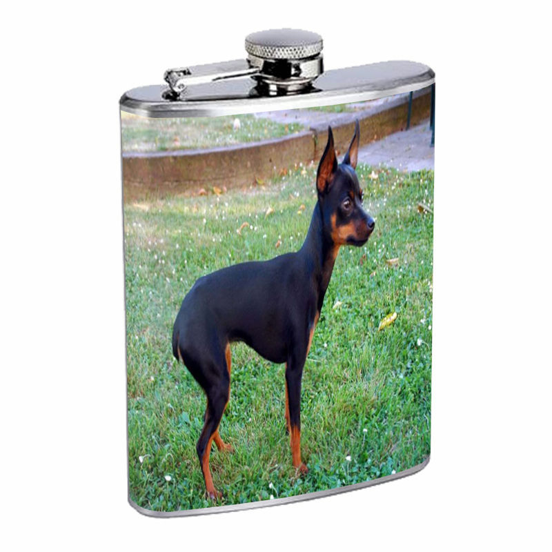 Dog miniature pincher 01 Stainless Steel Flask 8oz