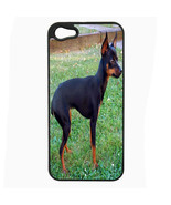 Dog miniature pincher 01 iPhone 5 5S Hard Case Back Cover - $10.42