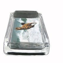 "Horse Glass Ashtray D6 4""x3"" Pony Mustang Thoroughbred Mare Colt Stallion - $14.95"