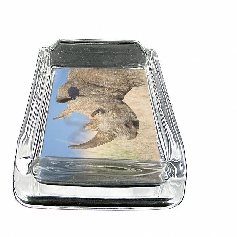 "Rhino Glass Ashtray D1 4""x3"" Africa Two Horn Grassland Savannah Animal"