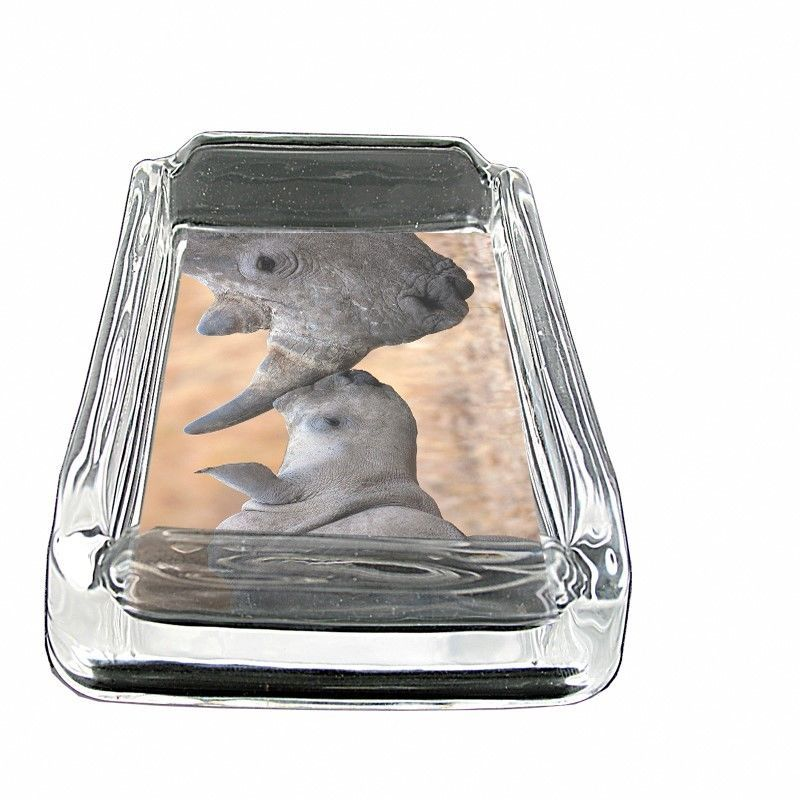 """Rhino Glass Ashtray D4 4""""x3"""" Mother Baby Africa Two Horn Savannah Animal"""
