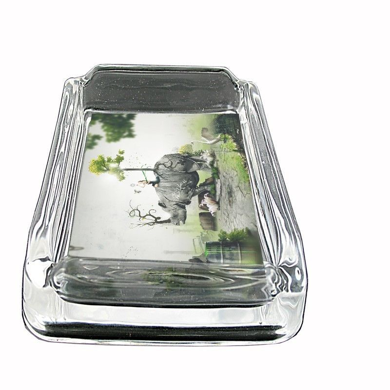 "Rhino Glass Ashtray D5 4""x3"" Mythical Artistic Girl Surreal EcoConscious"