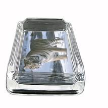"Tiger Glass Ashtray D1 4""x3"" Wildlife Zoo Bengal Cat Wild Animal - $9.85"