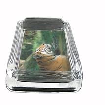 "Tiger Glass Ashtray D9 4""x3"" Wildlife Zoo Bengal Cat Wild Animal - $9.85"