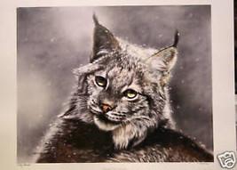 Lesley Harrison Through Cat's Eyes LTD Ed Print S/N - $142.55